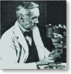 Fleming in die laboratorium